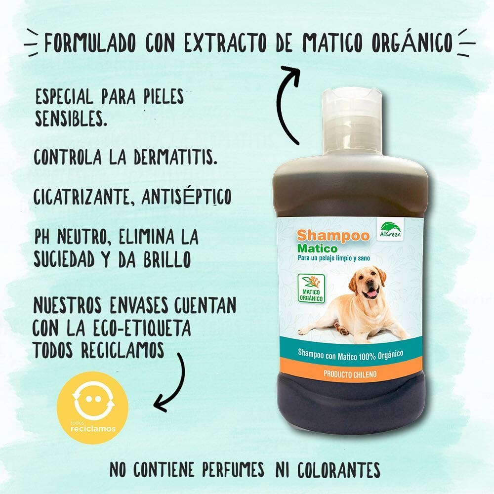 Pack: Shampoo de matico 300 ml + Spray de matico 150 ML